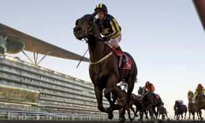 Tourism In Dubai Up By 30 per cent Thanks To Dubai World Cup